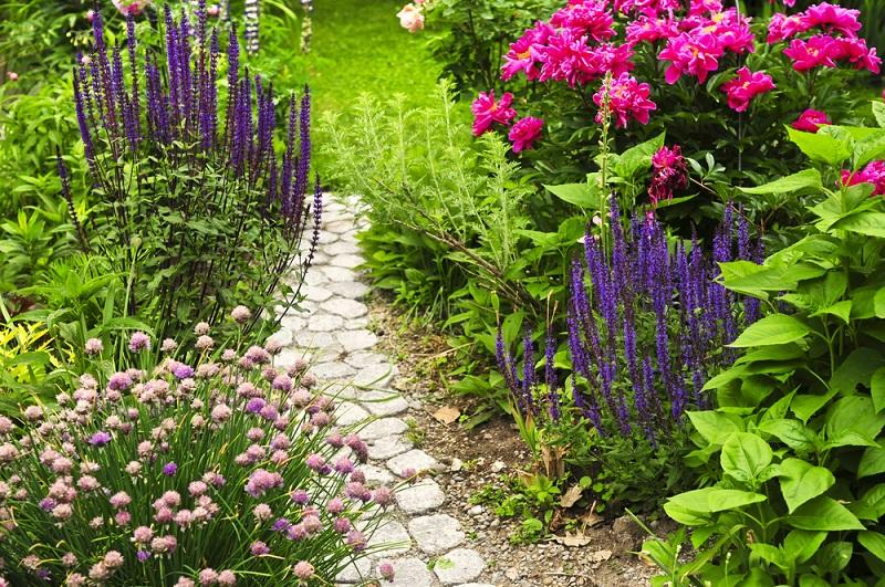 Сад в стиле Эко